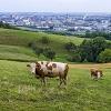 Österreich wird zum EU-Problemfall?