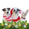 Weihnachtsmarkt für Herrl & Hund