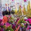 Weihnachtsmarkt Blumengärten Wien