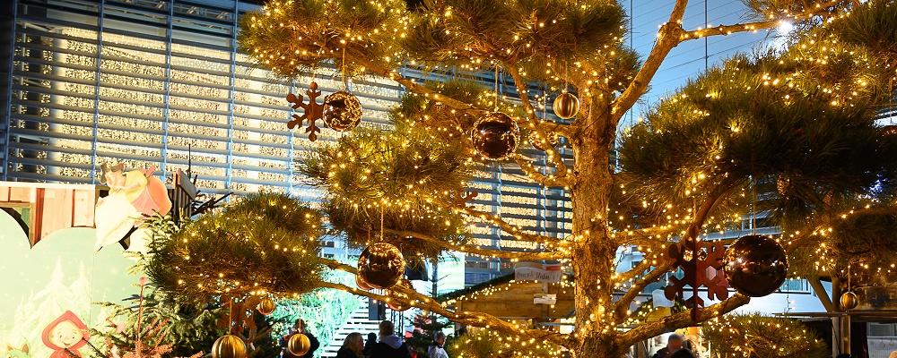 Weihnachtsalm: Messe Wien eröffnet Almadvent